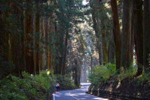CWJ日光鬼怒川02 杉並木と霊験の山と蔵の街