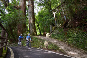 "CWJ-WAKAYAMA03 The Mysterious Long Ride in ""Kumano Kodo"" (Pilgrimage Route)"